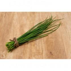 Warzywa i zioła świeże